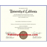 onde encontrar impressão de certificado para faculdade Jaraguá